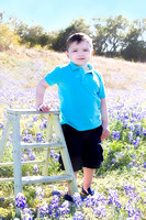 Nolan | Bluebonnet Mini Session