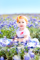 N. Bluebonnet Session | San Antonio Children's Photographer